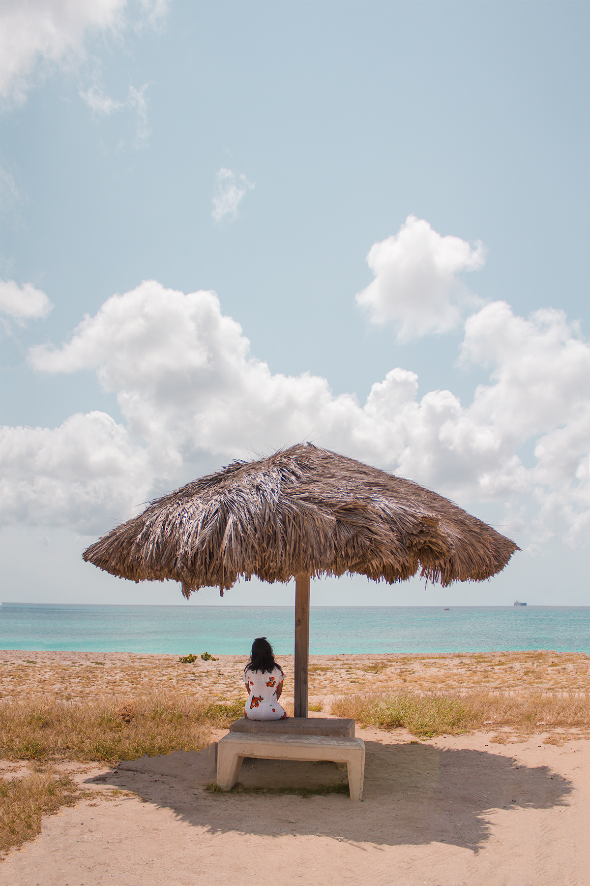 The Best Things To Do In Aruba 24 Hours Or Less